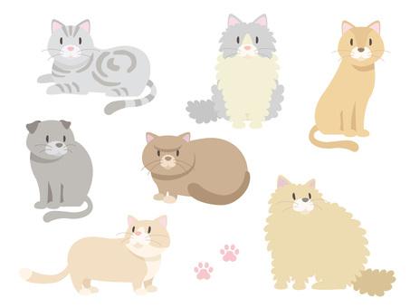 Various cats _ 03