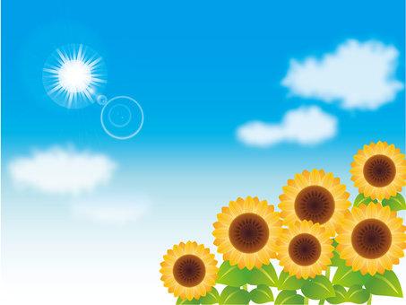 푸른 하늘과 태양과 해바라기