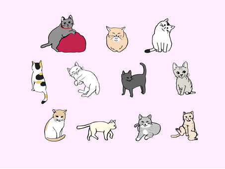 Cats with various patterns