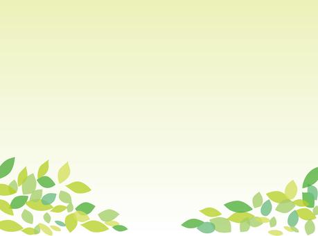 Fresh green leaves frame