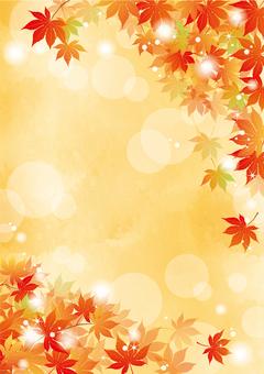 秋葉楓框架橙色1垂直