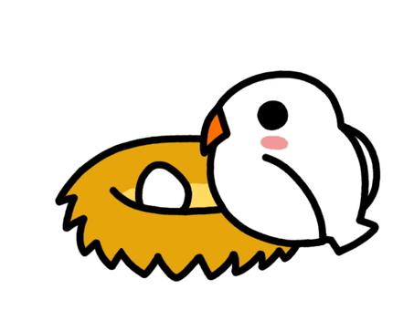 Bird's nest white