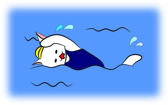 Nyanko swimming