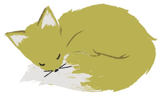 A fox sleeping fox