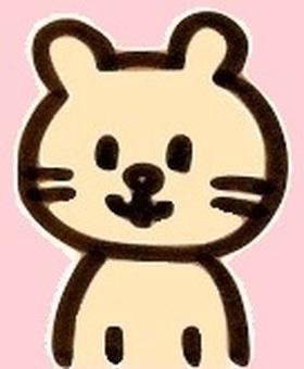 Cat cat color cat