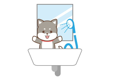 Dog_shower