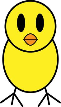 小鸡 -  001
