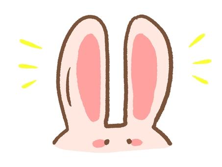 Usagi's ears