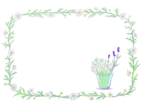 Herb decorative frame lavender · chamomile