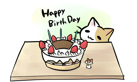 Birthday celebration cat