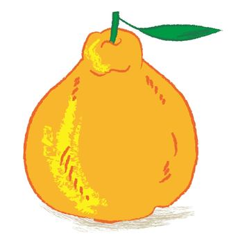 King of citrus fruits