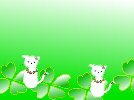 고양이 프레임 5