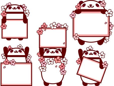 팬더 프레임 벚꽃 만개