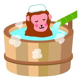 A monkey entering a hot spring