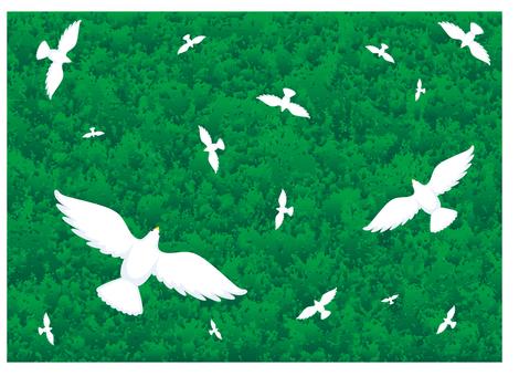 Forest image flock Flying birds Wallpaper