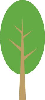 Garden tree / street tree tree