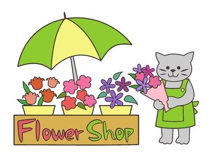 貓的花店顏色