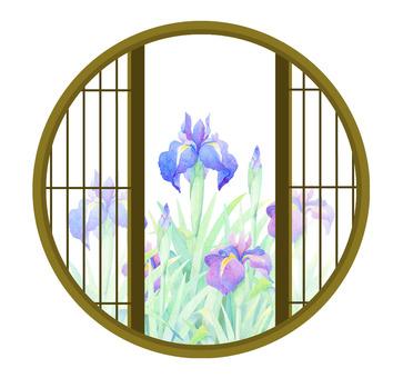 Iris irish from a round window ★ 0043-M