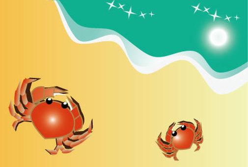 Beach crab postcard