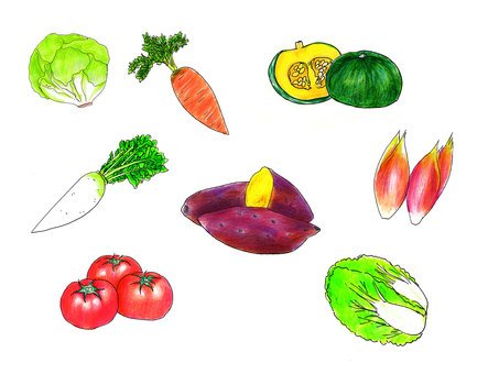 Vegetable summary -1