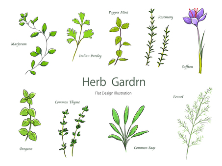 Herbal coloring
