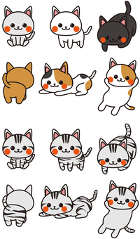 A lot of cats