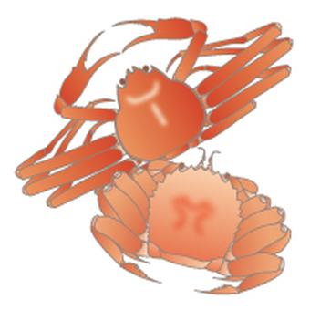 Food allergy display obligation goods _ crab
