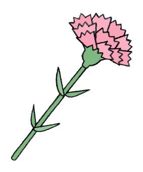 어버이 날 (카네이션 핑크)