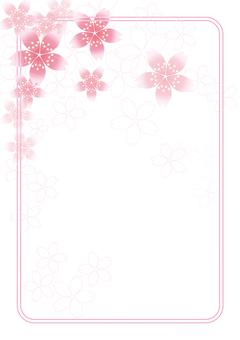 Sakura Sakura & Board 58