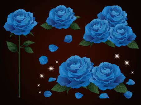 Dark background rose and sparkling material · Blue