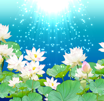 Light lotus (blue)