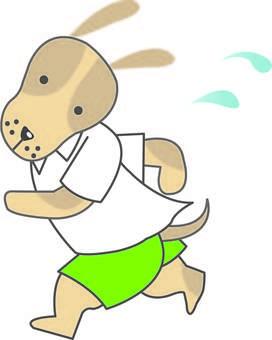 Jogging Wanko