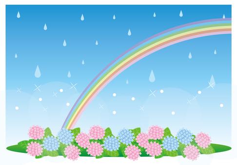 繡球花和彩虹的風景