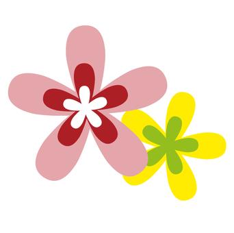 Flower pink & yellow