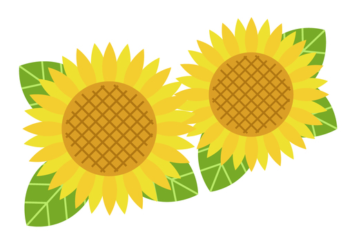 Sunflower pattern 1