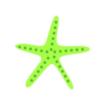 녹색 불가사리