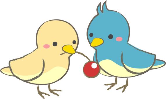 Mr. Small Birds
