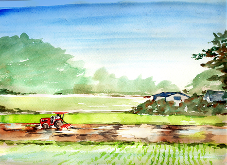 Rice planting watercolor