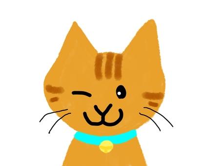 Winking Chatra cat