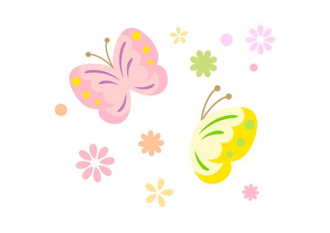 Spring Material 2