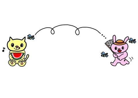 Cat and rabbit summer