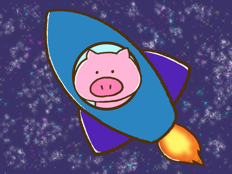 Pigs and rockets and the universe
