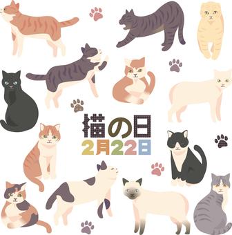 고양이의 날 세트 01