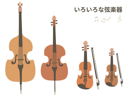[Music] Illustration set of various stringed instruments