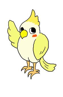 Famous cockatiel