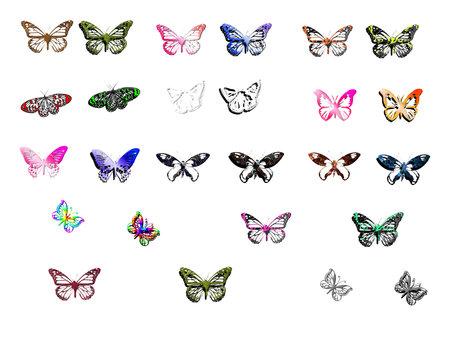 少し立体的な蝶の詰め合わせ
