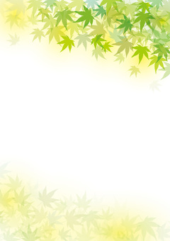 Green red leaf new green green leaf if leaf and wind and handle background wallpaper spring early summer