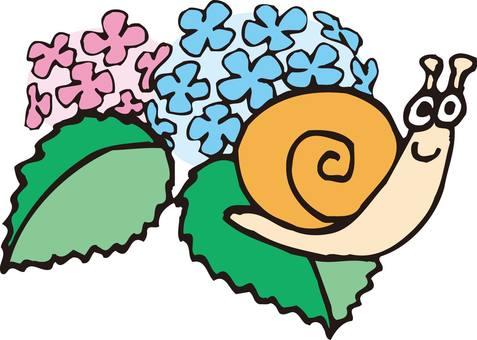 Snail, hydrangea