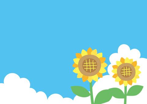 해바라기와 푸른 하늘