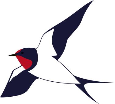 Swallow_ blue